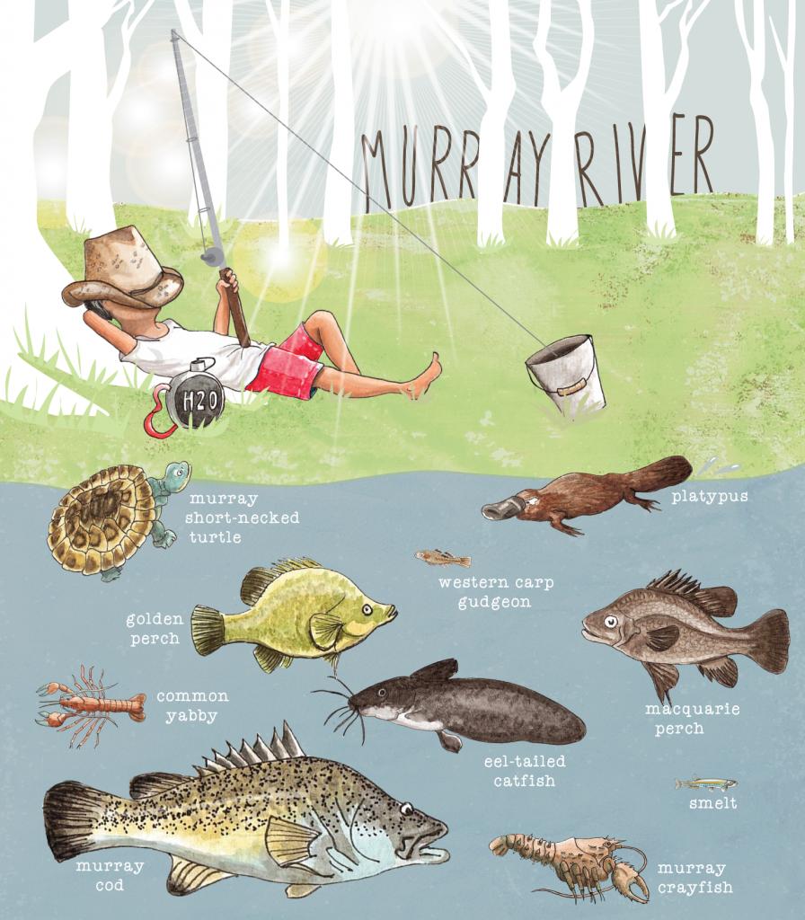 039-vic-murray-river